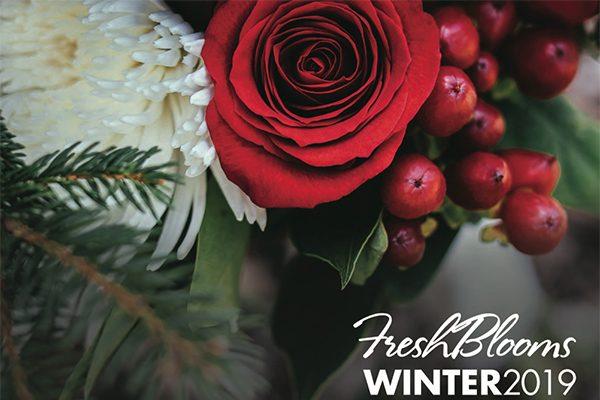 Winter 2019_Image